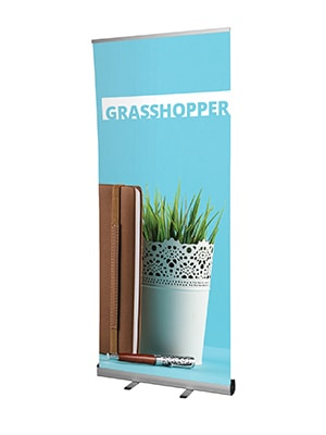 Grasshopper Graphic